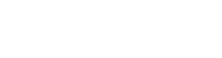 waldo driveaway logo white